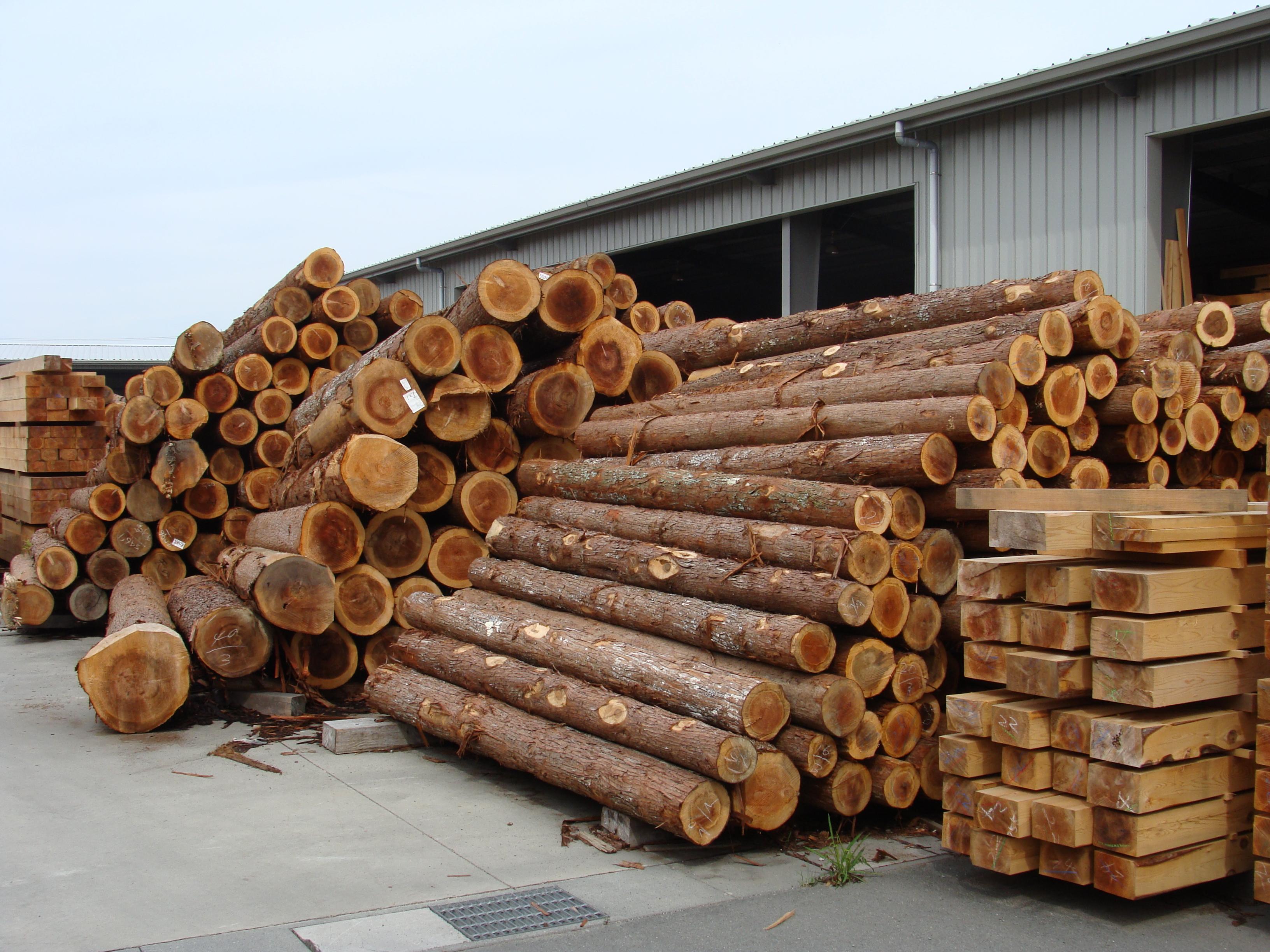木材は、かならず見て触れて確かめる。